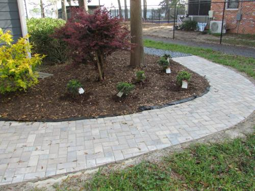 Pathway and Shrubs